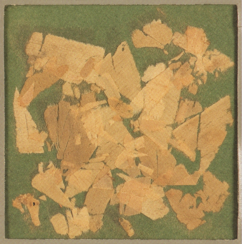 Fragments of silk torn from the Polheim's seams by  Dr. Edward 'Bill' Wilson.